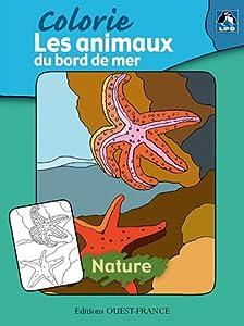"""Afficher """"Recueil. Albums à colorier. Éditions Ouest-France<br /> Les animaux du bord de mer"""""""