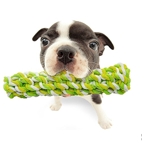 Best Small Dog Toys : Quot rope chew toy for dogs puppies best aggressive