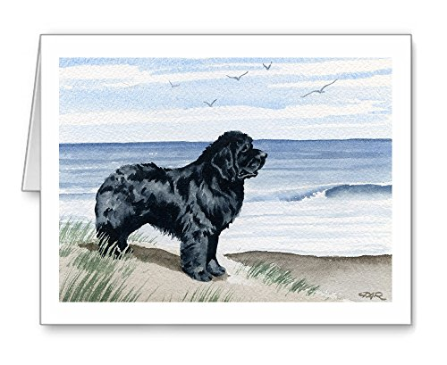 Newfoundland At The Beach - Set of 10 Note Cards With Envelopes