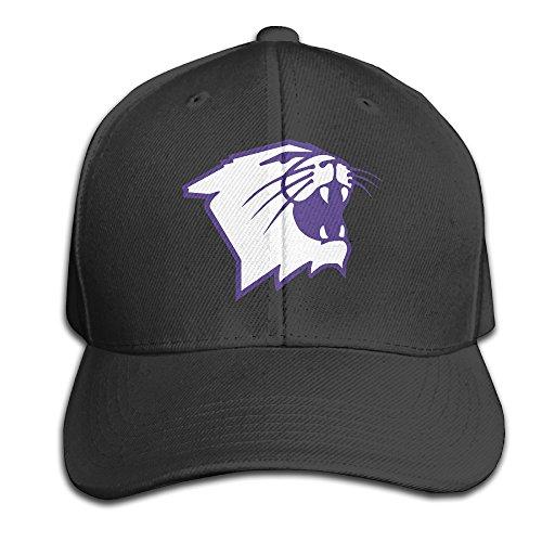 Northwestern Wildcats Logo Unisex Baseball Cap Black