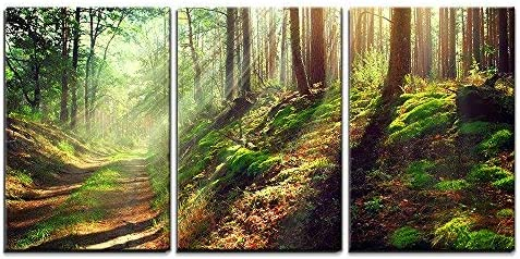 Amazon Com Wall26 3 Piece Canvas Wall Art Beautiful Scene Of Misty Old Path In Forest On An Sunny Autumn Morning Modern Home Art Stretched And Framed Ready To Hang