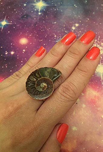 Ammonite Ring. Natural Fossil Ring, Statement Ring. Stone Ring. Adjustable Silver Rings for Women. Unique Ring. Grounding. Ammonite jewelry