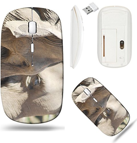 - Liili Wireless Mouse White Base Travel 2.4G Wireless Mice with USB Receiver, Click with 1000 DPI for notebook, pc, laptop, computer, mac book couple of asian elephants in love close up anima