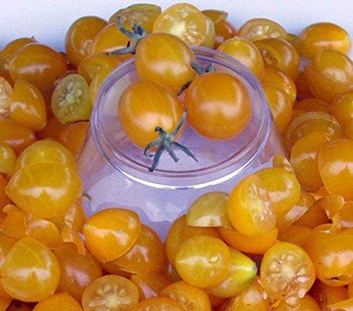Blondkopfchen Tomato Seed