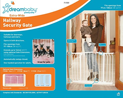 Product Image of the Dreambaby Auto