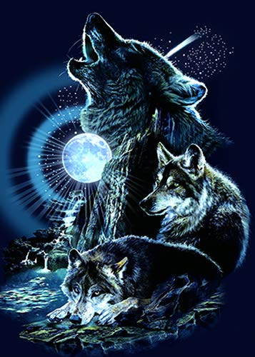 Wolf Frame Photo - 3D Home Wall Art Decor Lenticular Pictures, Wolf Collection Holographic Flipping Images, 12x16 inches Animal Poster Painting, Without Frame, Noble Wolf