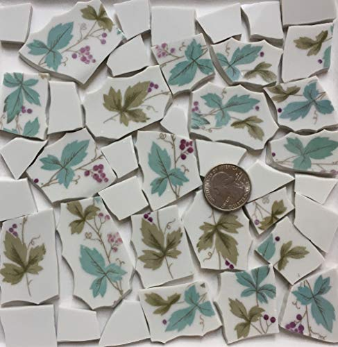 Broken China Mosaic Tile Art Supply for Crafts ~ Purple Grapes & Aqua Green Leaf Tiles (T#A180)