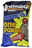 JUMBO Sunflower Seeds, Original, 16-Ounce (Pack of 6)