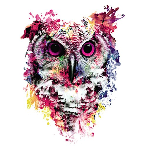 DIY 5D Diamond Painting by Number Kits, Crystal Rhinestone Embroidery Pictures Arts Craft for Home Wall Decoration Multicolored Owl 11.8 x 11.8 Inch