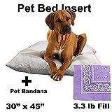 "Dog / Pet Bed Insert (30"" x 45"" 3.3 lb Fill) + Lavender Paisley Bandana Combo"