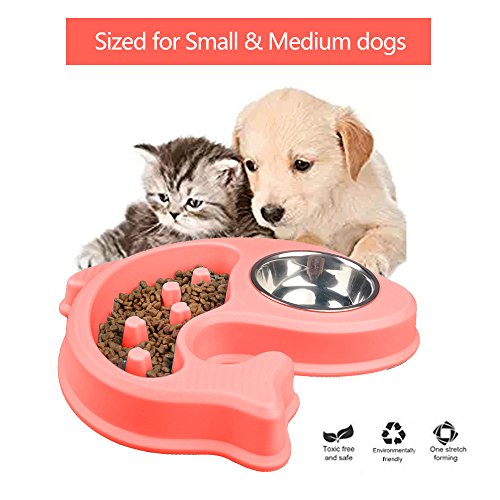 Dog Bowl Slow Feeder and Water Bowl Anti-Slip Bloating stop for Small Medium dog Cat Pet (Extra Small Bowl)