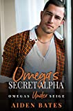 Omega's Secret Alpha: A Fort Greene Novel (Under Siege Book 2)