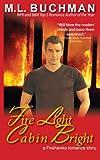 Fire Light Cabin Bright (Firehawks Hotshots) (Volume 3)