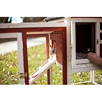 Image of Advantek Stilt House Rabbit Hutch Farmhouse Red Home and Kitchen