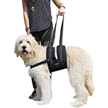Labra Veterinarian Approved Dog Canine K9 Sling Assist Chest Strap Adjustable Reflective Straps Support Harness Helps Loss Stability Joint Injuries Arthritis ACL Rehabilitation Rehab