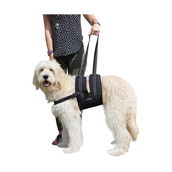 Dog-Canine-K9-Sling