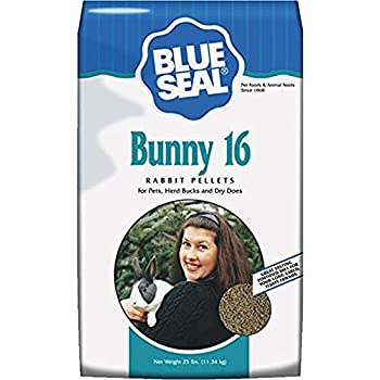 Amazon.com : Blue Seal Show Hutch Deluxe Rabbit Food 10 ...