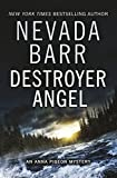Front cover for the book Destroyer Angel by Nevada Barr