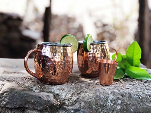 Set of 2 Moscow Mule Copper Mugs with Stainless-Steel Lining | Set of 2 Moscow Mule Mugs with Copper Shot Glass | Set of 2 Mule Mugs Lined with Stainless-Steel, Mint Julep Mugs for Home Bar by Urban Vintage LA (Image #8)