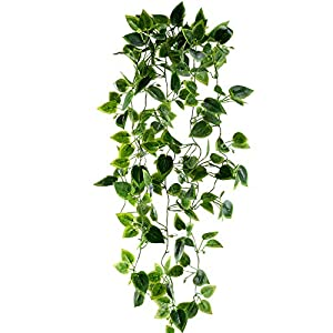 HUAESIN Artificial Vines 3.4 FT Fake Hanging Plants Scindapsus Vine Silk Ivy Plants Greenery Leaf Cover for Shelve Weeding Wall Indoor Outside Hanging Basket Decor 91