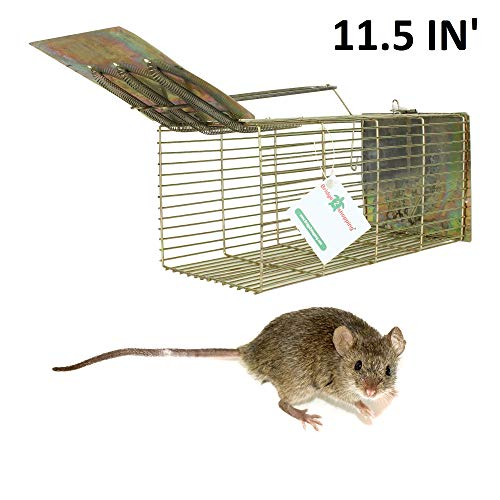 Bridge2Shopping Rat Trap Cage, 11.5 Inch', for Big and Middle Size Rats