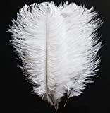 White Ostrich Feather 12 to 14 Inch Pack of 200. Ship From New York
