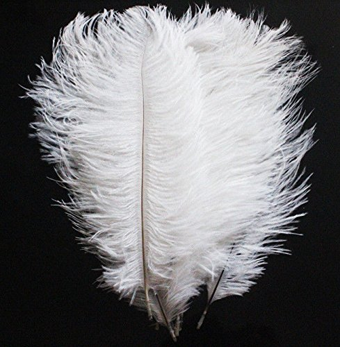 White Ostrich Feather 12 to 14 Inch Pack of 200. Ship From New York by BD Crafts