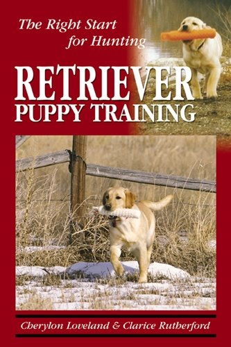 Retriever Puppy Training: The Right Start for (Hunting Retriever)
