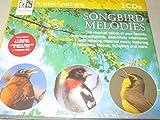 Songbird Melodies