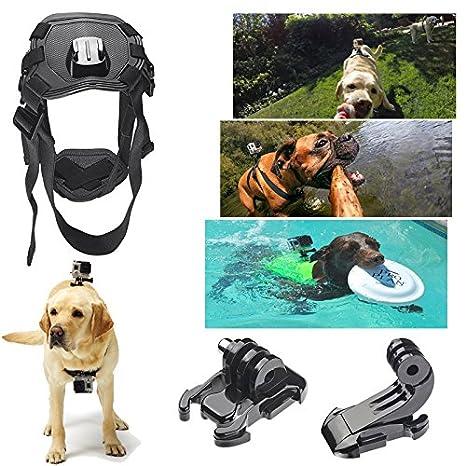 cisno perro de mascota Fetch Arnés de vuelta soporte de cinturón de correa para el pecho para GoPro Hero 4 3 + 3 2 Cámara: Amazon.es: Electrónica