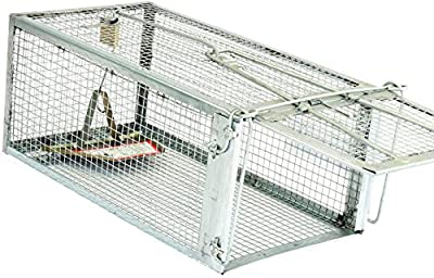 Rat Trap – Animal Humane Live Cage