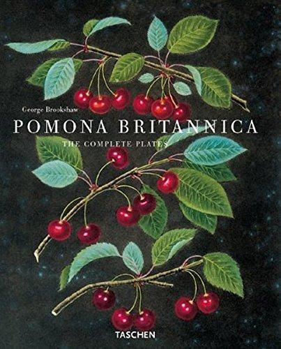 Pomona Britannica: The Complete Plates (Jumbo)