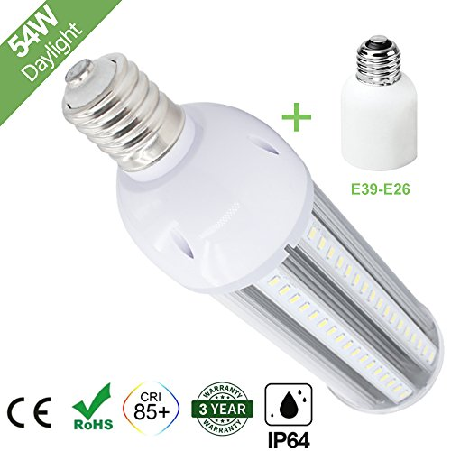 Large Base Led Light Bulbs in US - 1