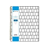 Blue Sky 2019 Weekly & Monthly Appointment Book & Planner, 15-Minute Increments, Flexible Cover, Twin-Wire Binding, 8.5\