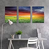 BE.SUN Custom Oil Painting,Nature,Mystical Horizon with Dark Storm Cloud in Meadow with Sunset View Image Modern Decor,A for Your Relatives and Friends 3 Panels,24x35inchx3pcs,Multicolor