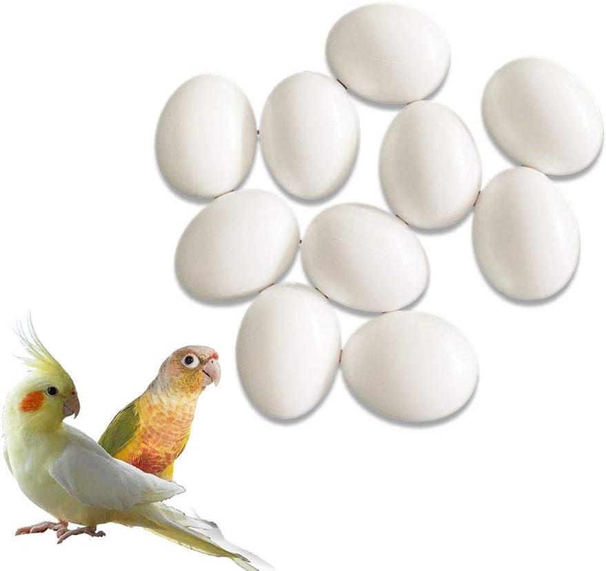kio 8pcs Plastic Eggs Simulated Bird Eggs, Solid Parrot Dummy Eggs Hatching Eggs Green Cheek,Trick Birds to Stop Laying Eggs, Bird Supplies, for Lorikeet&Ringneck Dove, Quaker, Cockatiel (26mm21mm)