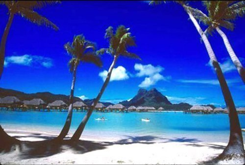 Buyartforless Tropical Palm Trees, Bora Bora by Beverly Factor 36x24 Art Print Poster Beach Palm Trees Retreat Sand Ocean Vacation (Tropical Retreat)