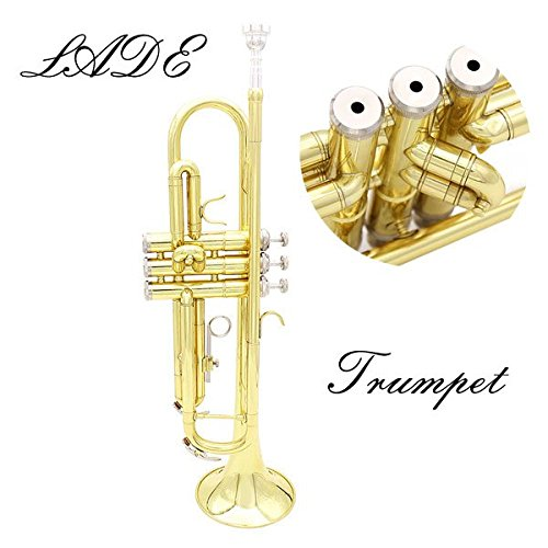 SOUND HOUSE 29 Lade Gold Trumpet Bb b Flat Brass Trumpet with Case & Accessories