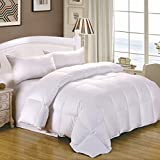 Cozy Feather Real Goose Down Comforter Duvet