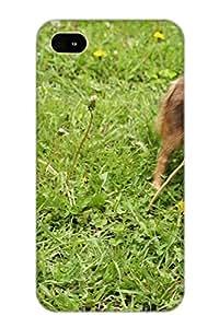 Bczfpa-4557-cuaiysu New Iphone 4/4s Case Cover Casing(animal Dog)/ Appearance