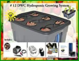 Hydroponic Growing System SELF-WATERING DWC BUBBLER Kit # 12-6 H2OtoGro
