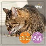 Pet Craft Supply Premium Maximum Potent All Natural