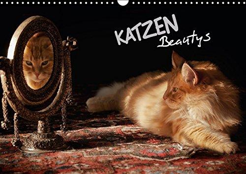 KATZEN Beautys (Wandkalender 2016 DIN A3 quer): Rassige Katzen mit Blues im Blut! (Monatskalender, 14 Seiten ) (CALVENDO Tiere)