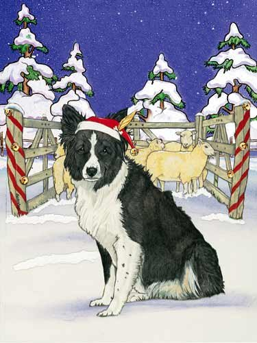 Border Collie Christmas Cards Santa's Cap : 10 Holiday Cards with Envelopes ()
