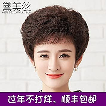 Amazon Com Dai Mei Silk Wig Elderly Wig Short Curly Hair Fluffy