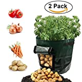 Plant Grow Bags, 2-Pack 10 Gallon Garden Potato Grow Bags Vegetable Planter Tub with Handles for Indoor Outdoor (10 Gallon)