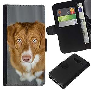 KLONGSHOP // Tirón de la caja Cartera de cuero con ranuras para tarjetas - Pato de Nueva Escocia Perro perdiguero tocante del perro - Samsung Galaxy Core Prime //