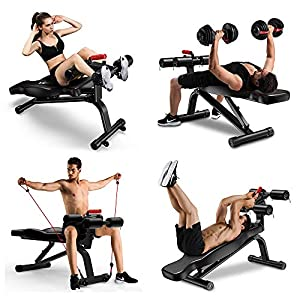 Yoleo Adjustable Weight Bench – Foldable Workout AB Bench for Home Gym, Incline/Decline/Flat Perfect for Bench Press, Sit-ups, Leg Lifts, Full Body Fitness