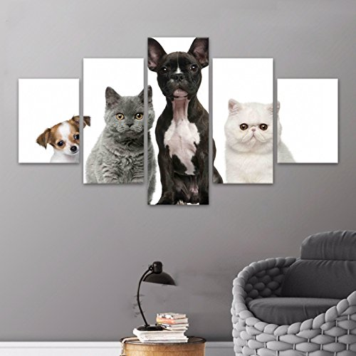 [Medium] Premium Quality Canvas Printed Wall Art Poster 5 Pieces / 5 Pannel Wall Decor Animal Cat Modular Painting, Home Decor Pictures - With Wooden Frame