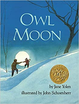 Image result for owl moon
